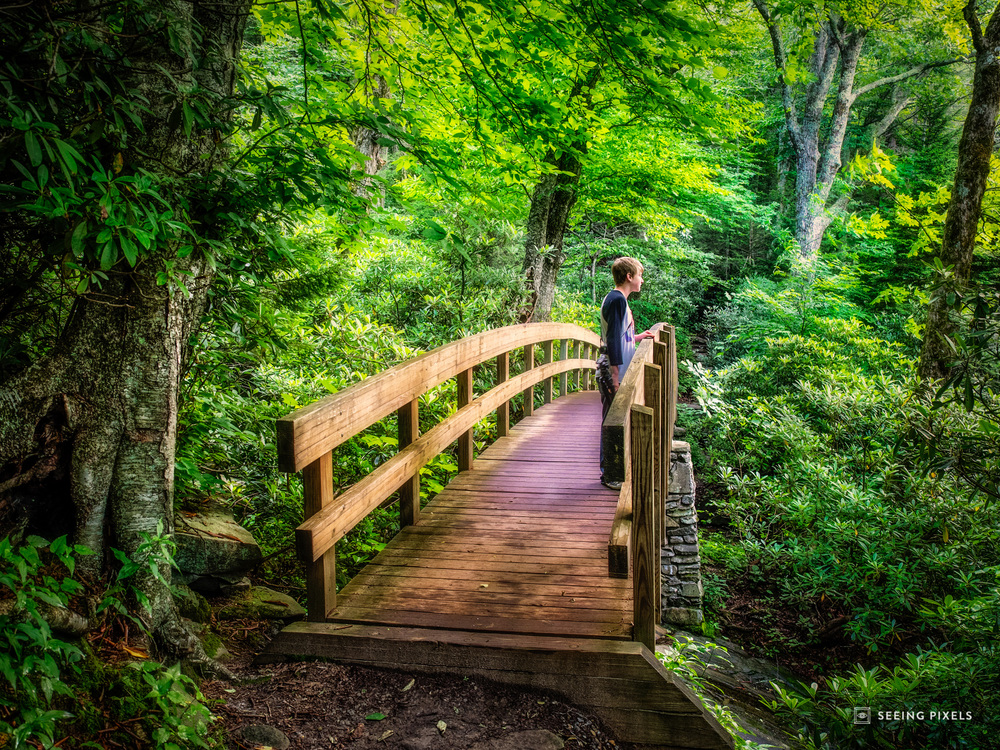 Fairy Tale Surroundings - Nate stopping on the walkway bridge to admire the falls below