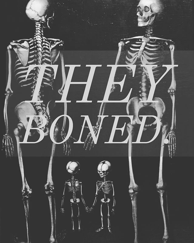 I found this stock photo via #adobe. I couldn't help but notice two skeletal children. Then I realized the obvious: they boned. #boner #pun #morbid #skeleton #skull