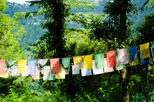 Buddhist prayer flags