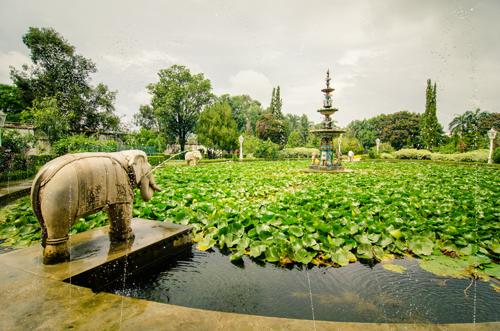 Udaipur-64.jpg