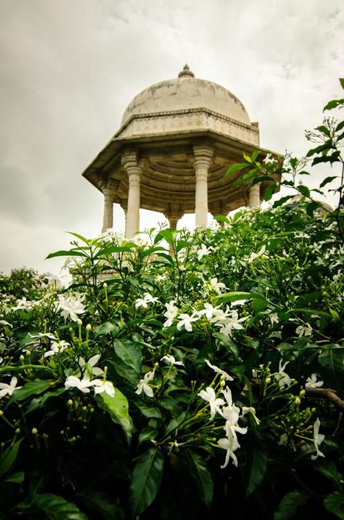 Udaipur-113.jpg