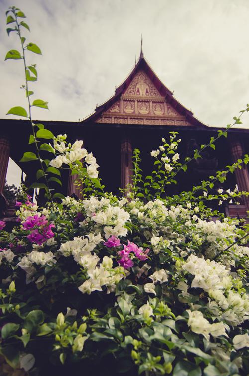 Vientiane-59.jpg