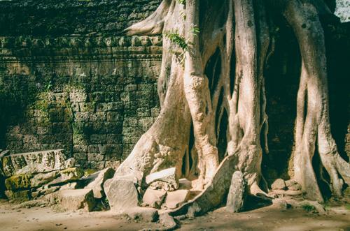 Siem Reap-87.jpg