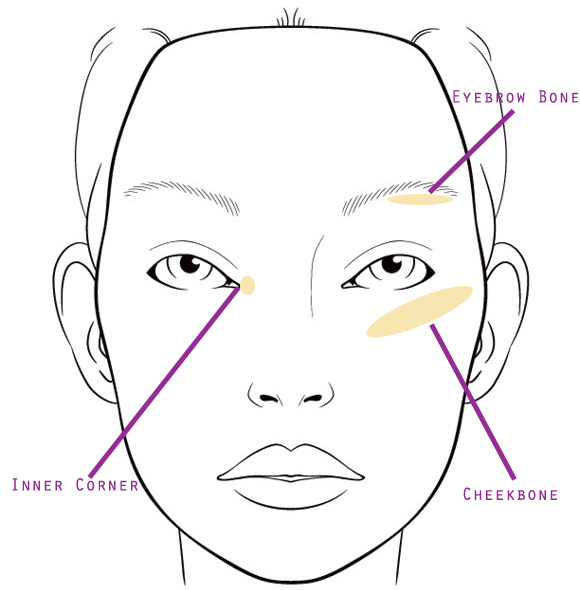 golden highlight face chart.jpg