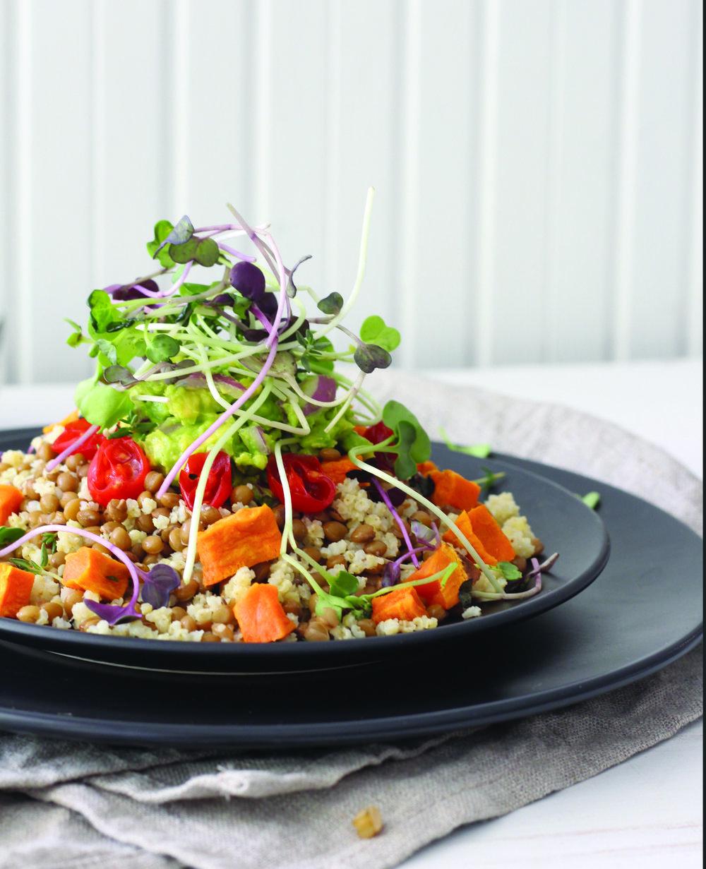 Quinoa Salad_v1.jpg