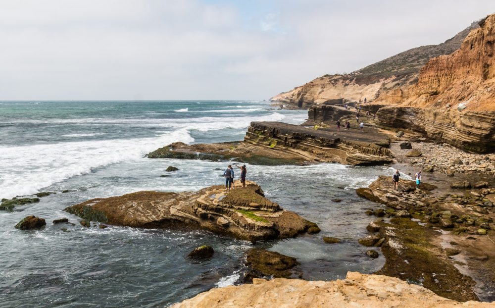 Photo taken by  https://www.californiabeaches.com/beach/cabrillo-national-monument/
