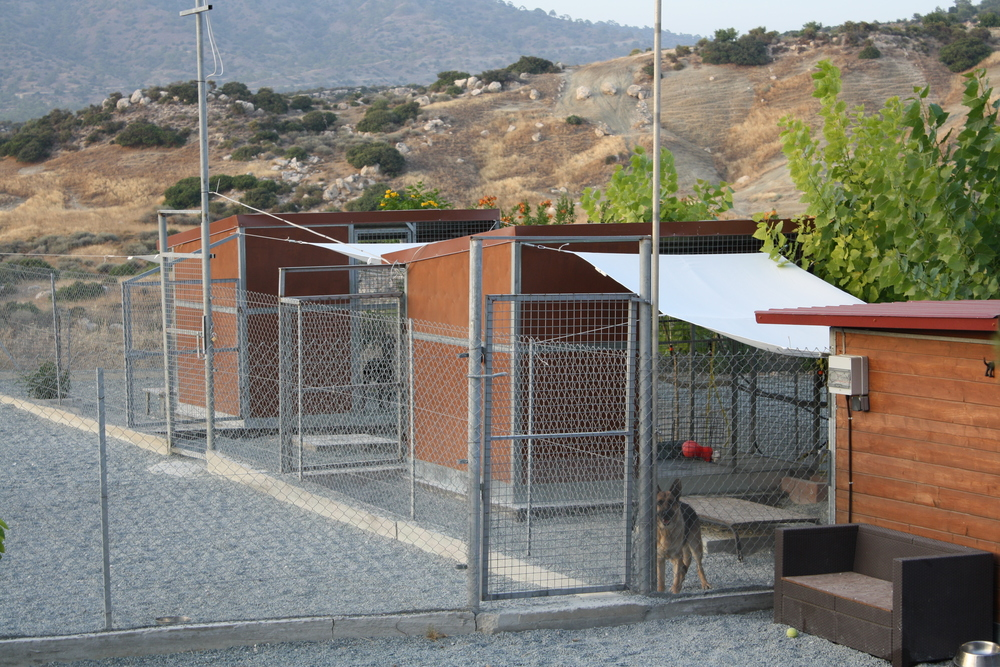 Dog Ranch - Limassol Dog Hotel - Detached Family Boarding Kennels and Training Area