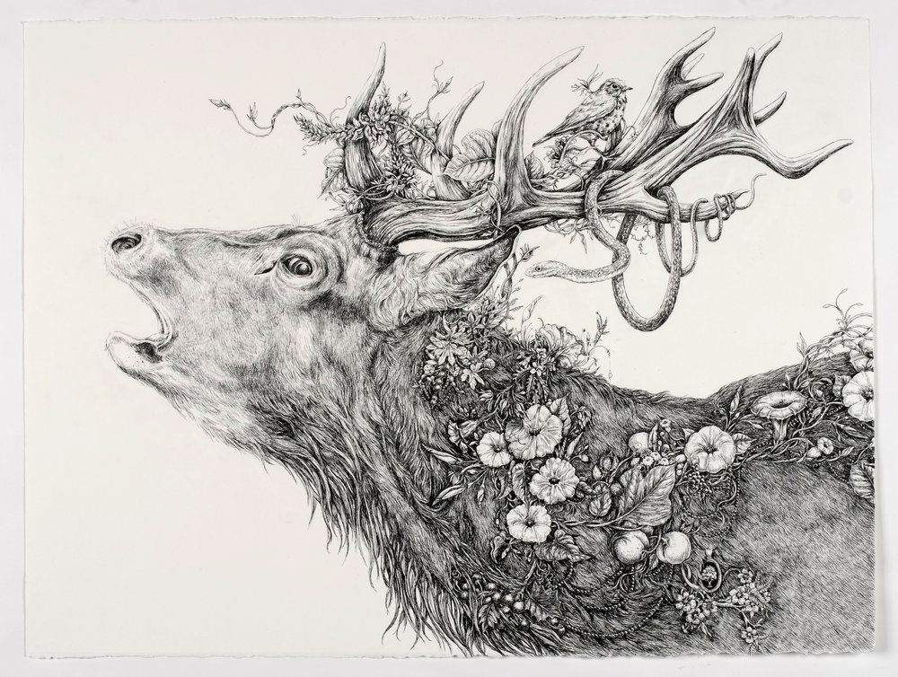 Rut (Stag)