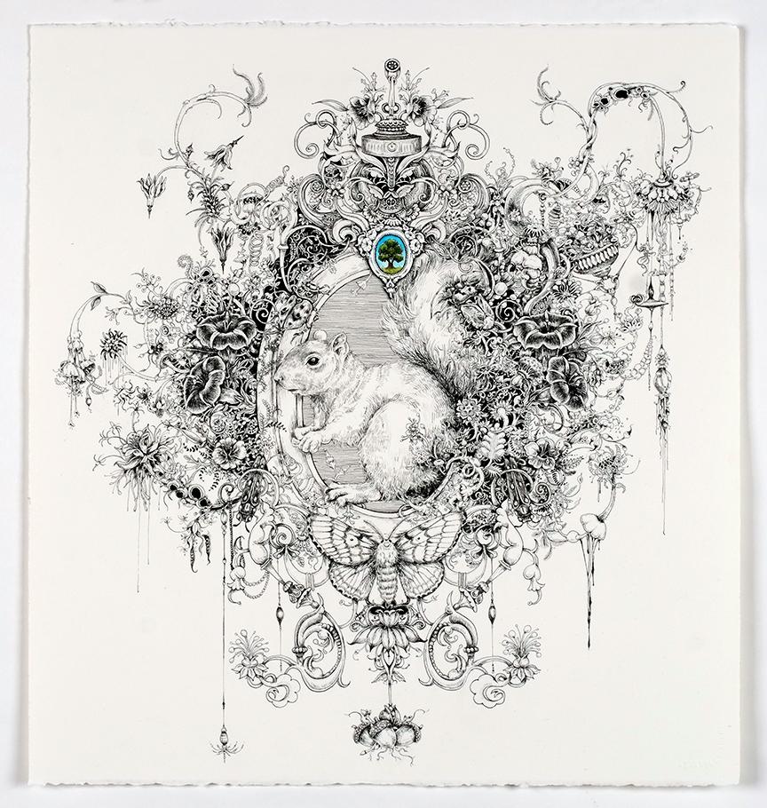 The Gatherer (Grey Squirrel)