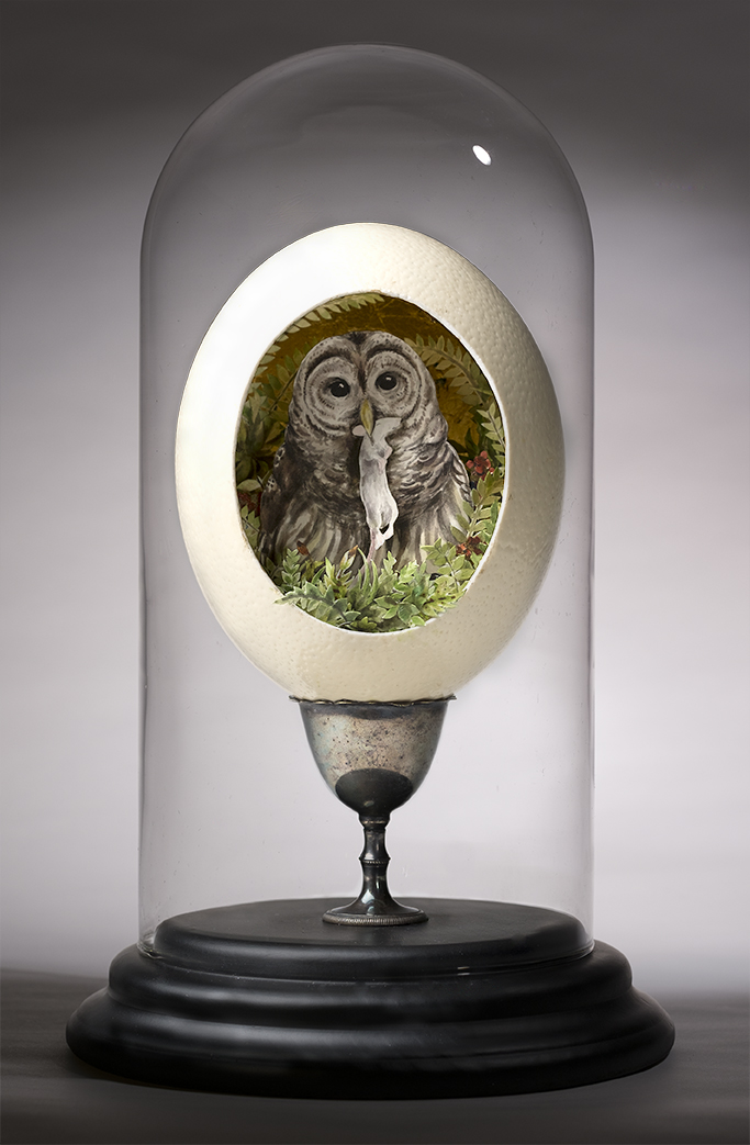 The Huntress (Barred Owl)