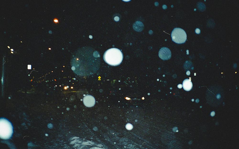 Dans la neige.