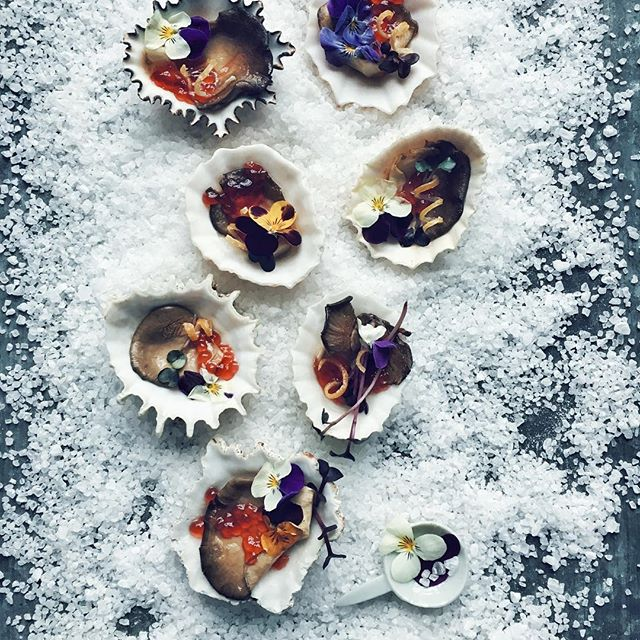 Workshop No. 2 vegan oysters #kkcgworkshops #oysters #oyster #food #foodphotography #vegan #camparycaviar