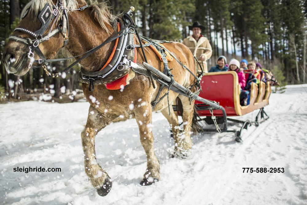 LTVA_Winter_053.jpg