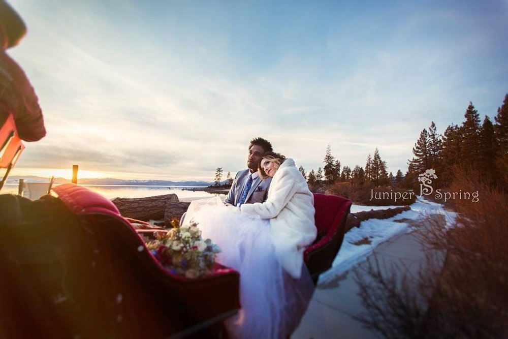 Wedding  sleigh sand harbor.jpg