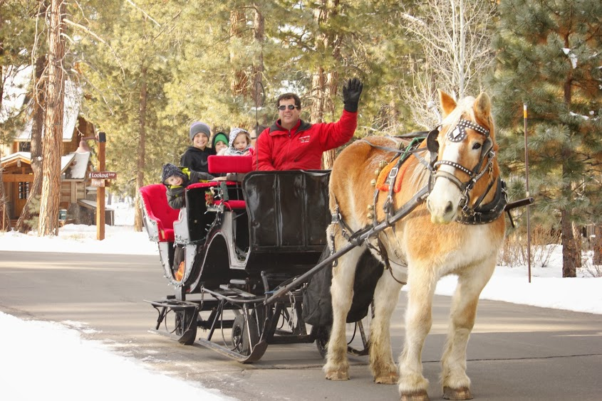 A Sleigh Ride at Sand Harbor Visitor Center, Incline Village, Nevada off hwy 28 with tour guide Dwight Borges & Duke the wonder horse in our Santa Sleigh on wheels.