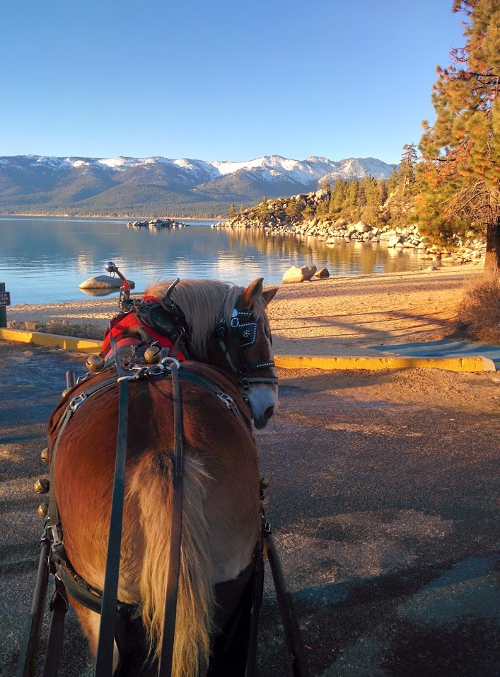 Sand Harbor Carriage Rides.jpg