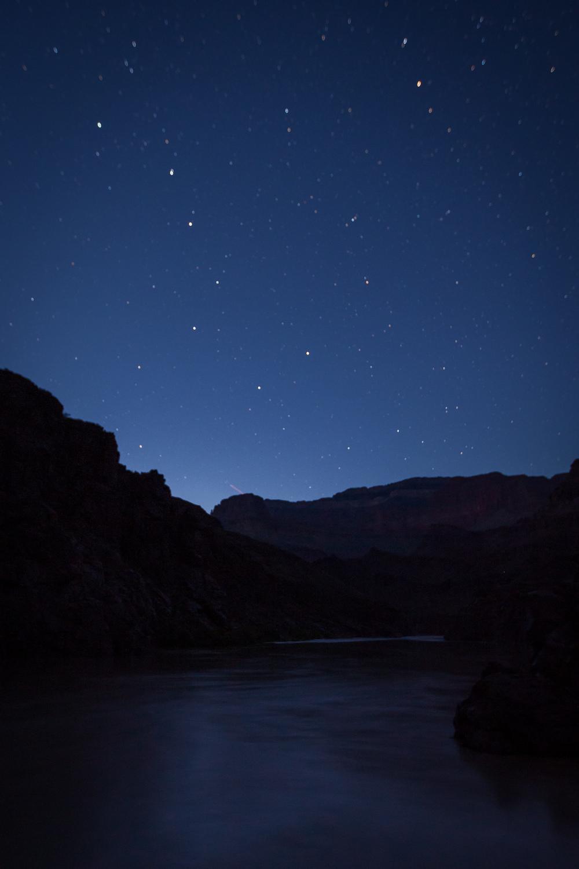 Hotauta_Night_Dipper_0001.jpg