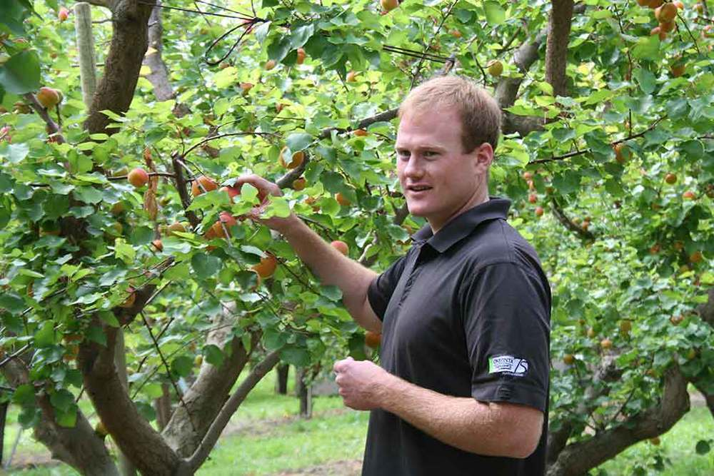 Sean Gilbert, Manager Gilbert Orchards