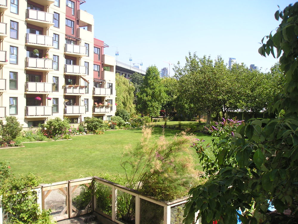 Creekview Garden 006.JPG