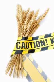 WheatCaution.jpg