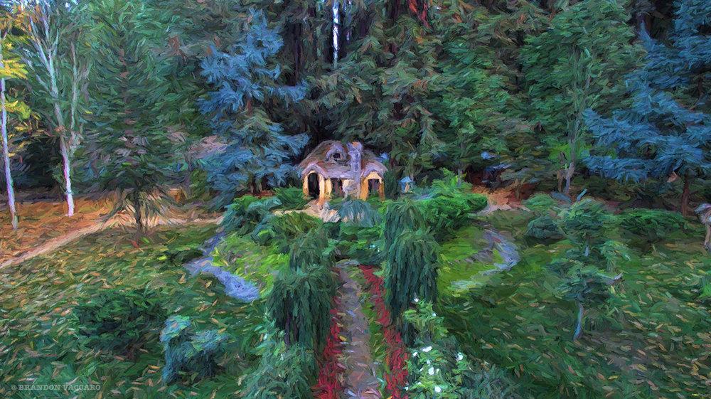 Nestledown-Painting-Art-Drone.jpg