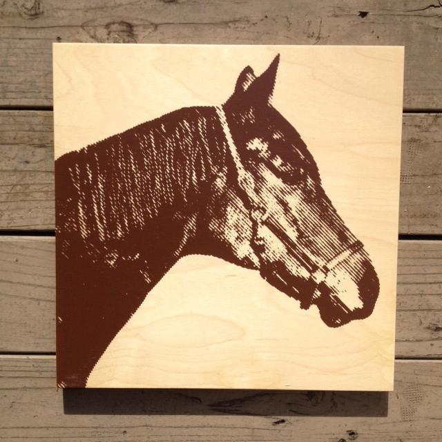 """Arabian Horse - 15x15"""" - $79"""