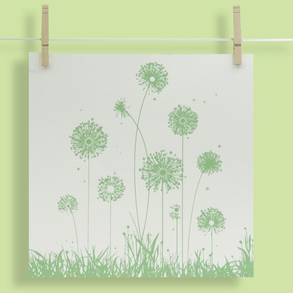 Dandelions 12x12