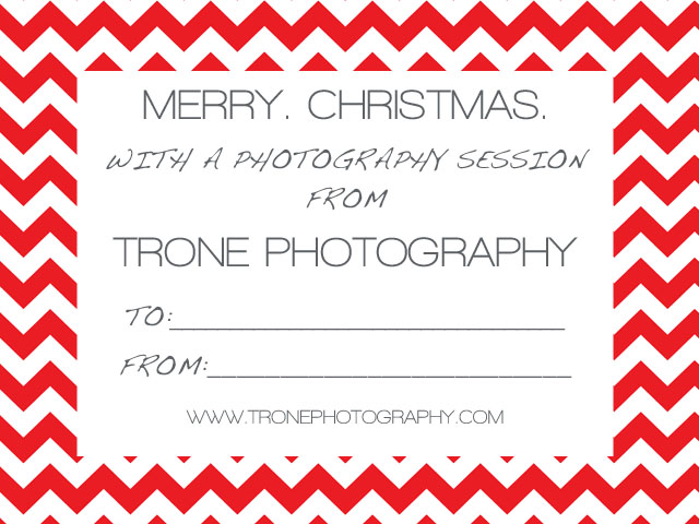 Tags: nashville christmas photographer , nashville christmas photos ...