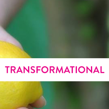 Copy of Transformational Coaching
