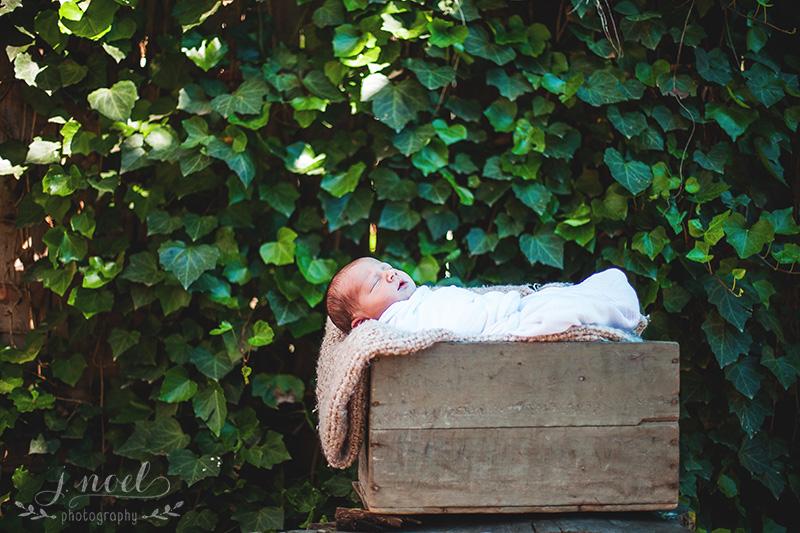 Baby+Stone-6969-1w.jpg