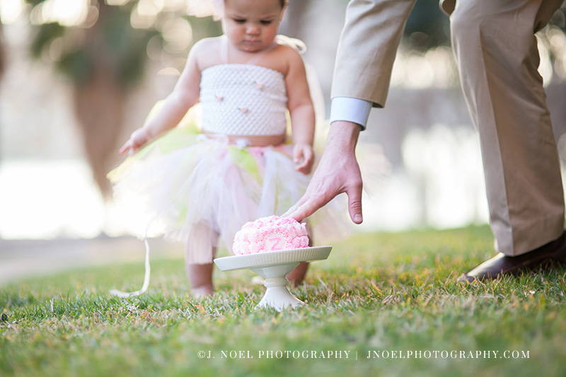 Austin Family Photographer 57.jpg