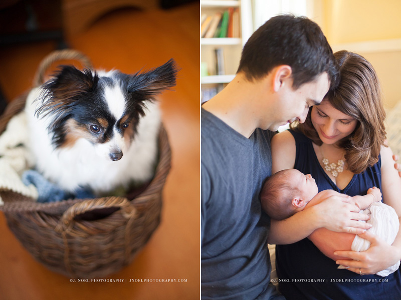 Austin Lifestyle Newborn Photographer 76.jpg