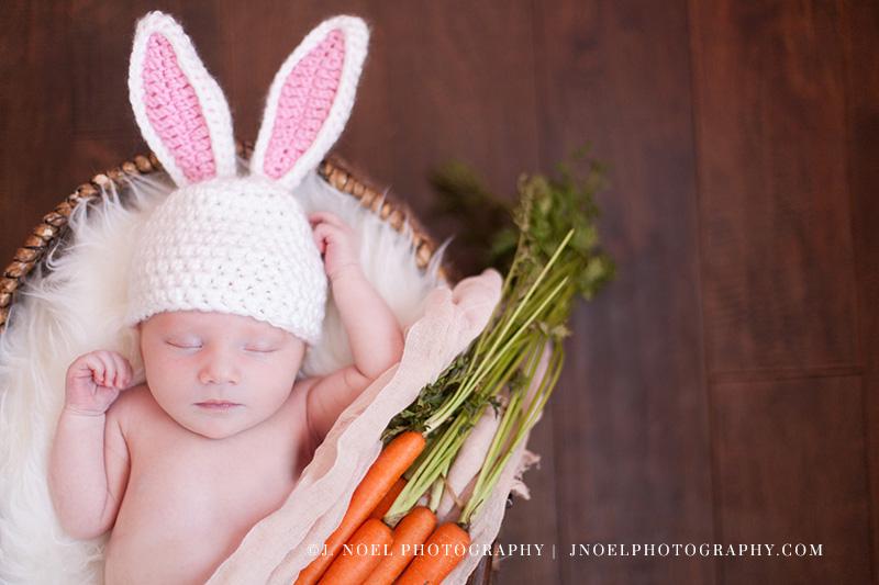 Austin Newborn Photographer 22.jpg