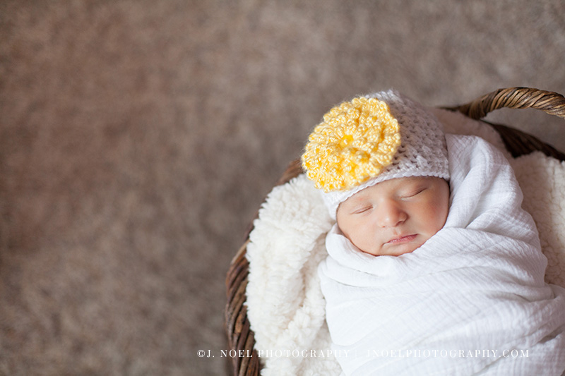 Austin Newborn Photographer14.jpg