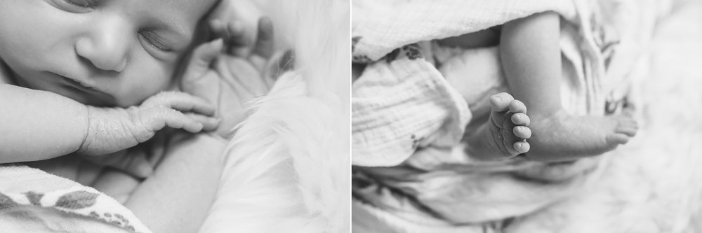 Austin Newborn Photographer 15.jpg