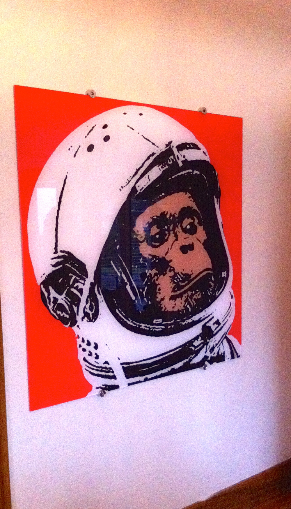 Space Monkey. Private Collection