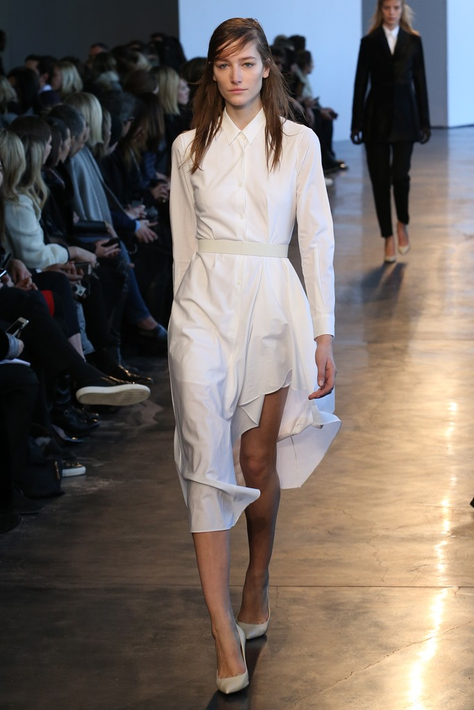 theyskens-theory21.jpg