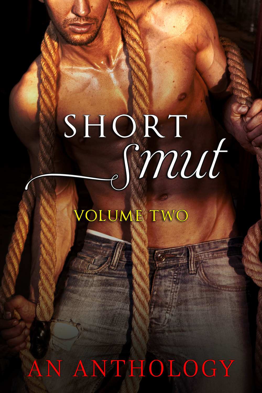 ShortSmutVolume2New-1600x2400.jpg