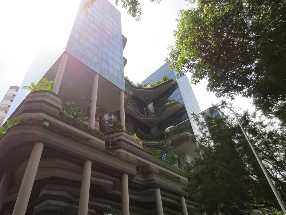 Unidentified AMAZING Building near Chinatown, Singapore