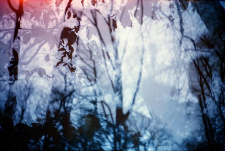 lca_winterpret__19__medium.jpg