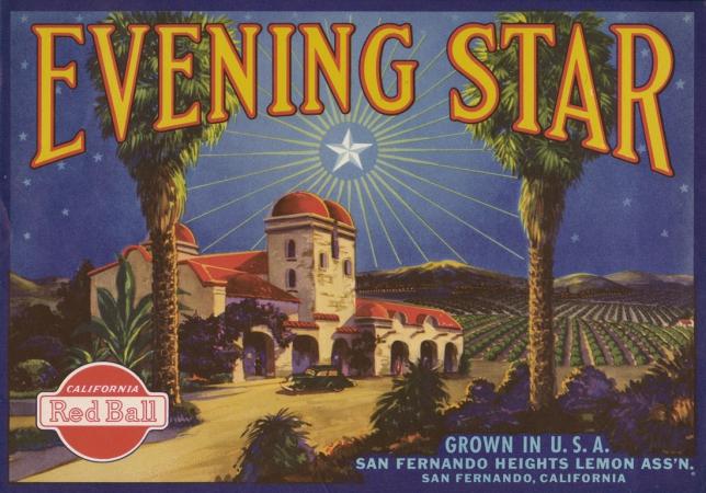 evening star.jpg