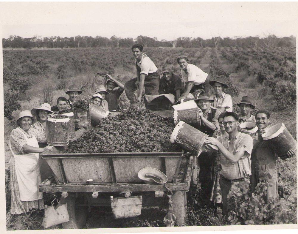 pickers-1950-21.jpg