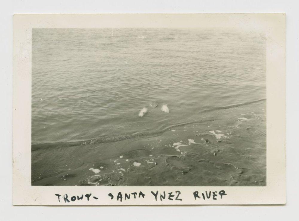 Album Pictures-209.jpg