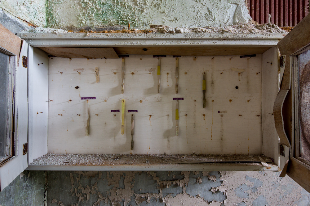 Patient toothbrushes    |    Central State Hospital    |    Georgia