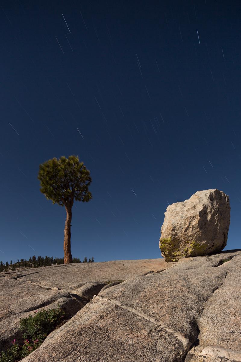 Yosemite Naional Park