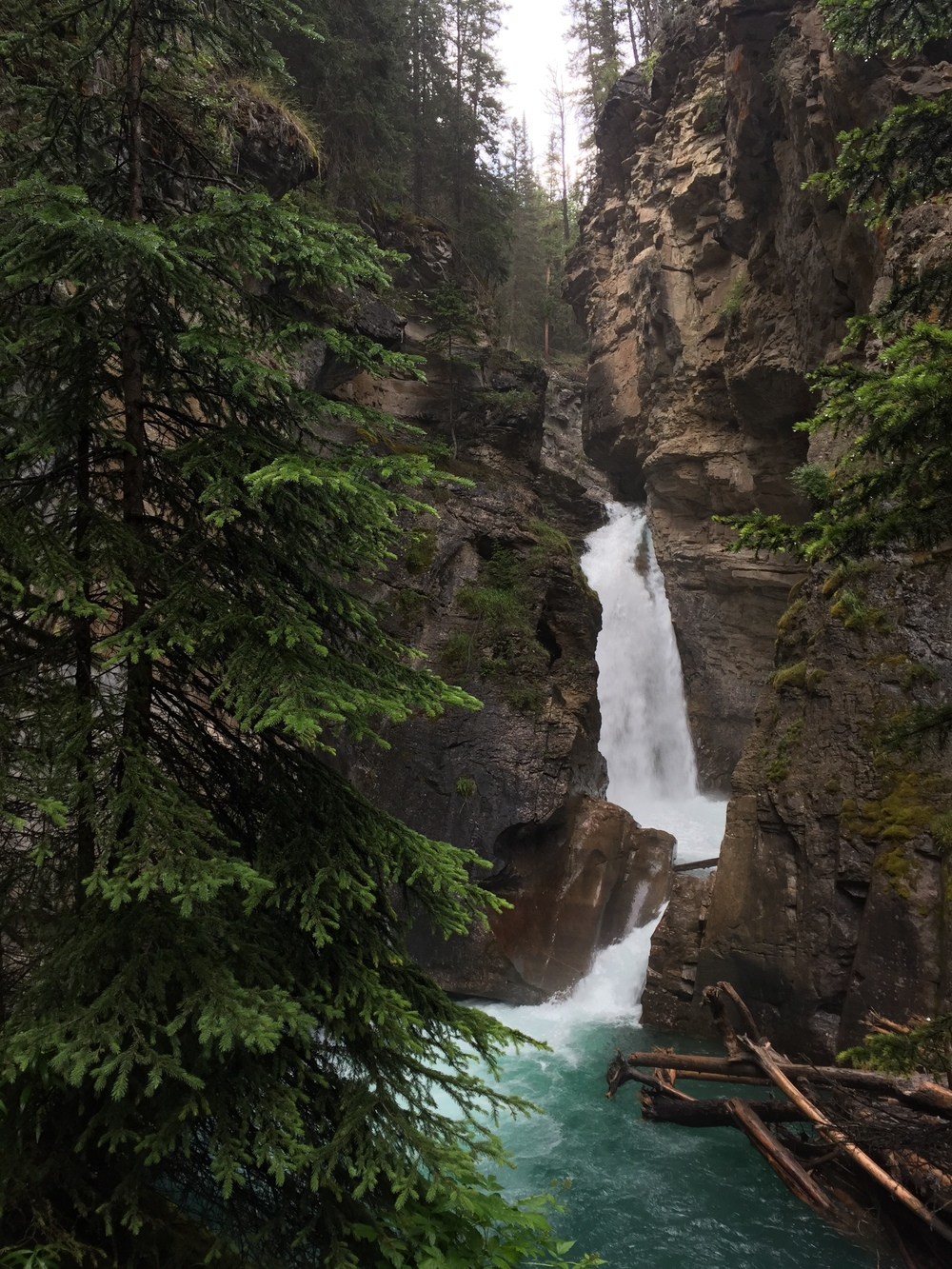 Lower Falls in Johnston Canyon, Banff National Park - iPhone image