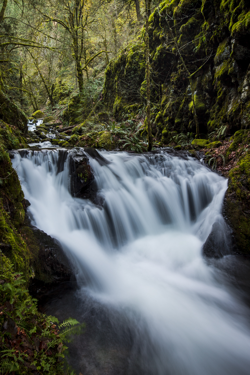 Emerald Falls     Columbia River Gorge     Washington