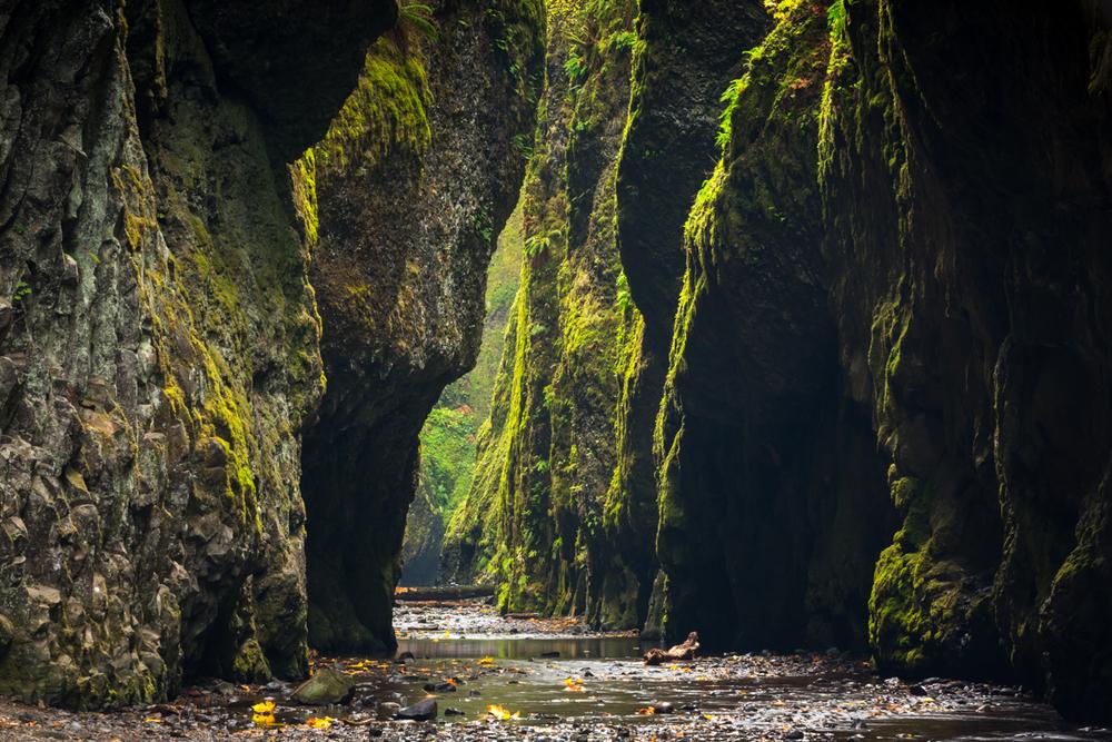 Oneonta Gorge     Columbia River Gorge     Washington