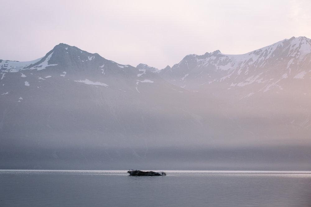 Glacier Bay National Park  |  Alaska