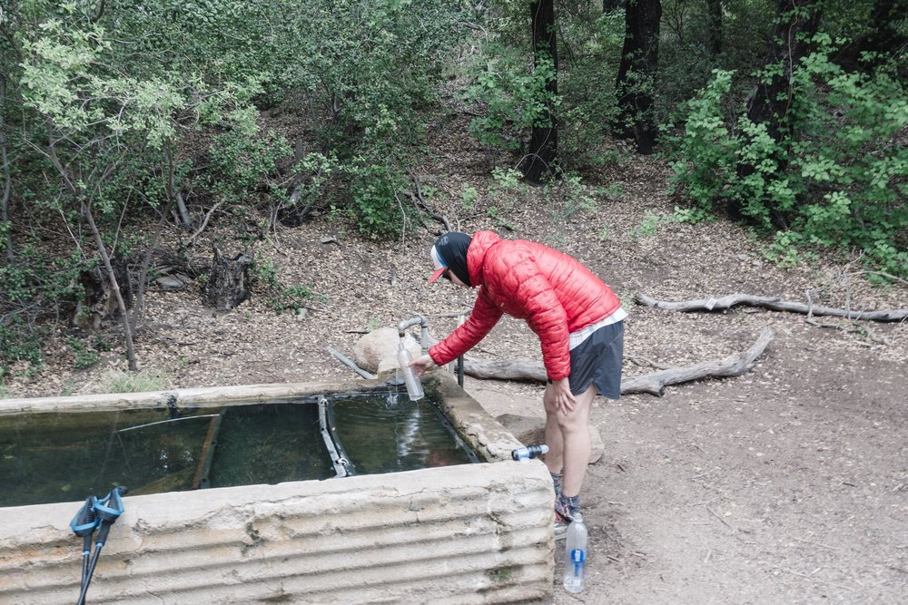 Author filling water from a trough.